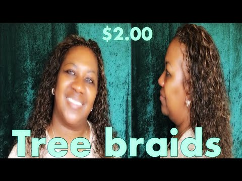 Tree braids (Full Tutorial)