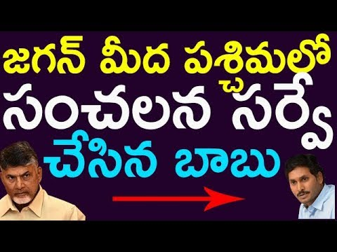 Chandrababu Naidu Survey On YS Jagan In West Godavari | Taja30