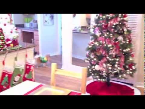 My Christmas Apartment Tour 2013 Music Videos
