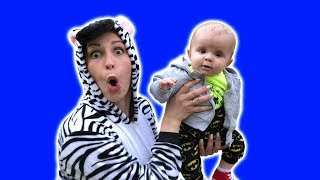 Kids Zebra and little BROTHER Are you sleeping Brother John Rhyme Song for Babies Educational Video