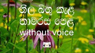 Neela Bingu Kela Karaoke (without voice) නීල බිඟු කැල
