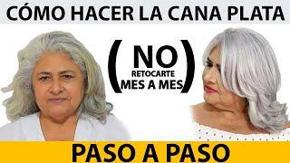 HAZ TU PELO BLANCO Y OLVIDA LOS RETOQUES MES A MES/ PASO A PASO