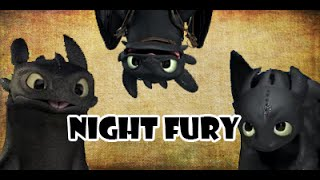 Night Fury Tribute