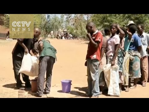 UN: Millions of dollars needed to curb food crisis in southern Africa