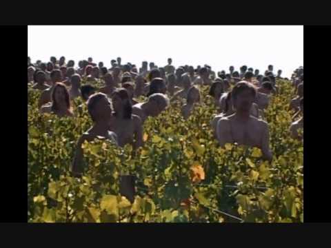 Installation S.Tunick dans le vignoble bourgignon à l'appel de Greenpeace (03-10-09)