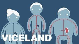 The Geographic and Socioeconomic Factors of Organ Transplants