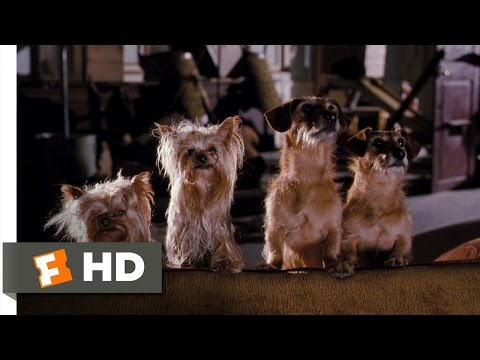 Hotel For Dogs (10/10) Movie CLIP - Dog Catapult (2009) HD