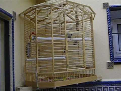jaula de madera de andres - YouTube