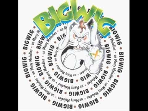 Cover image of song My So Called Friends by Bigwig