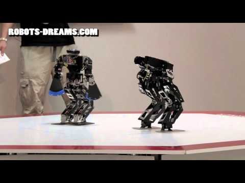 ROBO-ONE Humanoid Helper Robot: Lightweight Tournament