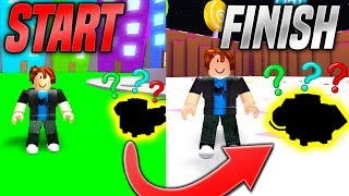 I Beat Pet Simulator In Under 5 MINUTES With This ONE PET! *BEST PET* (Roblox)
