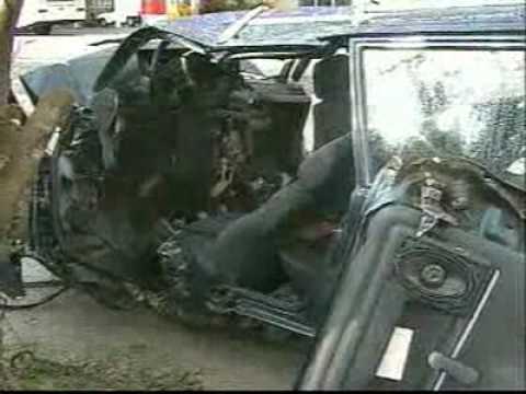 Capivara causa acidente grave na SC 410, em Governador Celso Ramos Vídeos RBS TV SC