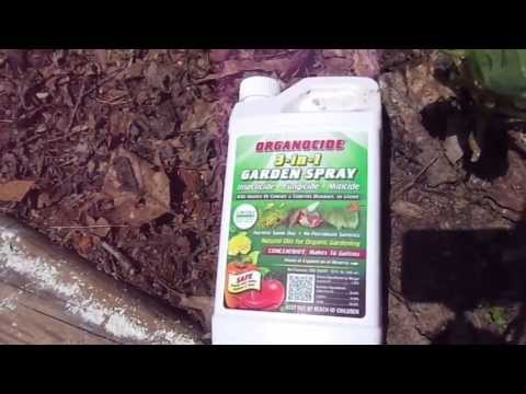 Organocide 3-in-1 Garden Spray Review