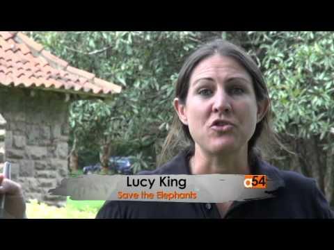 Kenya Elephant Protection