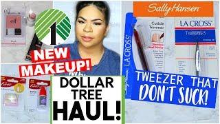 DOLLAR TREE HAUL 2018 | NEW DOLLAR STORE MAKEUP + BEAUTY FINDS! | Sensational Finds