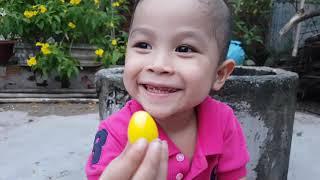 Bé Nhỏ Doli Săn Đồ Chơi ❤ ChiChi ToysReview TV ❤ Trò Chơi Bài Hát Trẻ Em Baby Toys Song