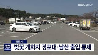강릉시, 경포대·남산 출입 통제