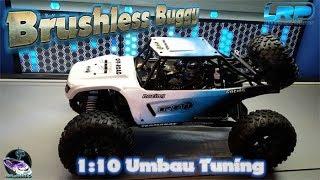 1:10 Buggy LRP Brushless 8,5T Umbau (Umfrage: Elektro Oder Nitro in der Zukunft ?)