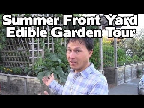 Front Yard Summer Edible Fruit & Vegetable Organic Garden Tour