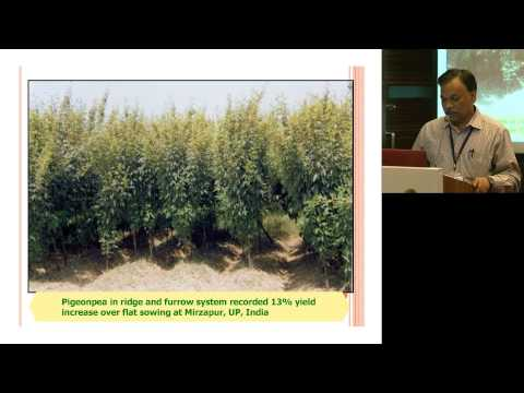 ILSI India: Climate Change And Indian Agriculture (Dr. B Venkateswarlu)