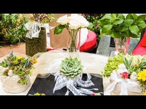 Home & Family - Shirley Bovshow's Living Succulent Bouquets