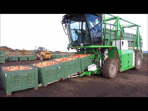 Apfelernte mit dem Kistentransporter KT 20