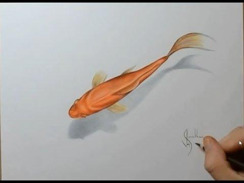 Cara Menggambar Ikan Emas 3D (Tiga Dimensi)