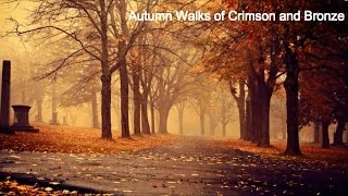 Songs for Walking Through Autumn || Playlist