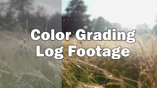 Color Grading Log Footage - A Tutorial in Premiere
