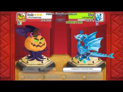 Dragon City : Evil Pumpkin Dragon