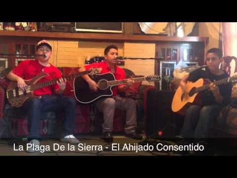 El Ahijado Consentido - La Plaga De La Sierra . Sierreño !! En Vivo! 2013