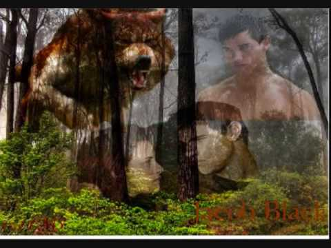 OF WOLF AND MAN JACOB BlACK.wmv Video