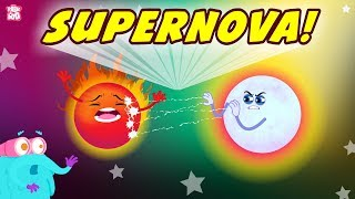 What Is Supernova? The Dr. Binocs Show | Best Learning Videos For Kids | Peekaboo Kidz
