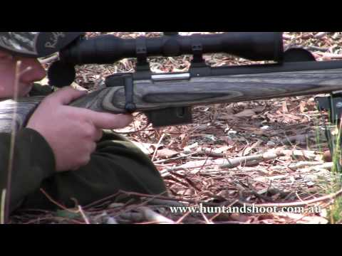 CZ 527 .223 Remington Varmint Laminate Review