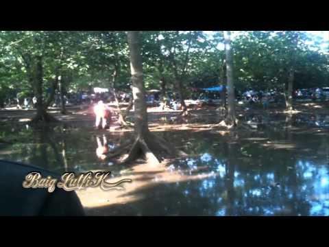 Burung Murai Batu Jawara 75 Juta Lepas Heboh video
