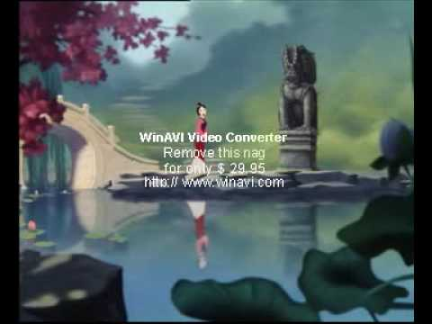 mulan--reflection(Cantonese movie version)