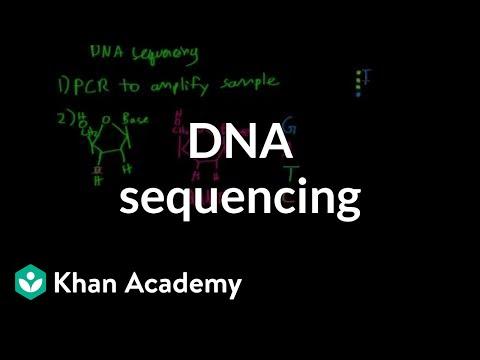 DNA sequencing | Biomolecules | MCAT | Khan Academy