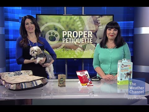 Poop, Manners & Storms, Oh My! Spring Pet Tips - The Weather Channel & Sandy Robins: by Petco