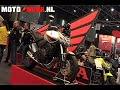 Vídeos de la Honda CB 600 F HORNET de 2009