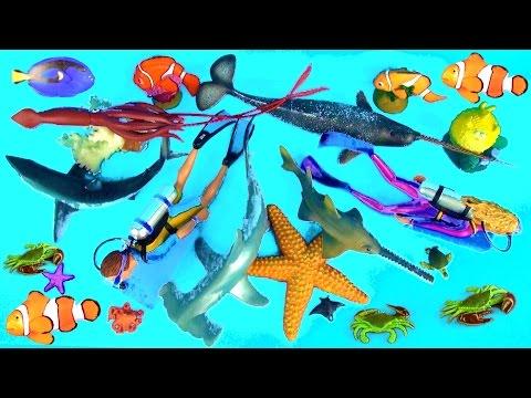 SHARK Toys Collection Fish Whales Mako Kids Toys Tiburón Tubarão with a FUN Ending