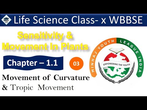 Class X Life Science Chapter 1.1 || Part 3 || Sensitivity and movements In Plant || Tropic Movement