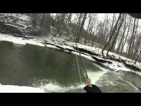 Erie Steelhead Fishing