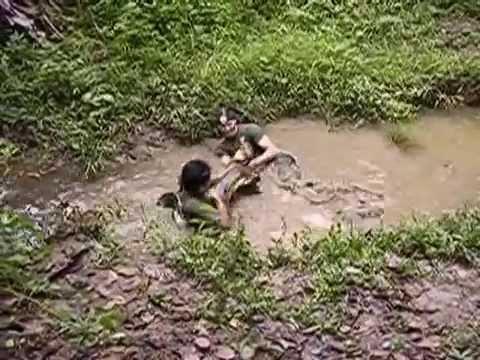 Anaconda siendo capturada | Anaconda catching-Peru (2 / 2)