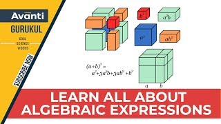 Class 9 Mathematics - Algebraic Expressions