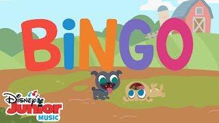 Bingo 🐶  | 🎼  Disney Junior Music Nursery Rhymes | Disney Junior