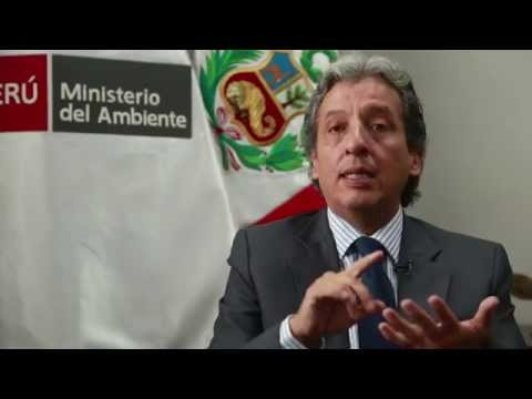Trata y salud en Madre de Dios. Entrevista a Manuel Pulgar-Vidal, Ministro del Ambiente