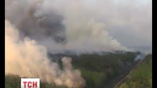 У лісах Чорнобиля ліквідували всі 15 осередків вогню - (видео)