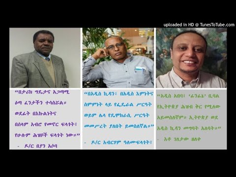 Panel Discussion With Dr Beyan Asoba, Dr Abreham Alemu, And Geletaw Zeleke – Pt 2 - SBS Amharic