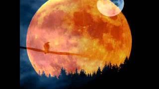 Watch Stonehenge Full Moon video