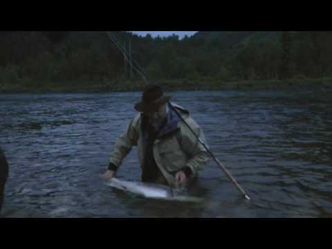 Gaula 2010 - Large Salmon (35 pounder) on the NFC-Beats on a Orvis Helios rod!